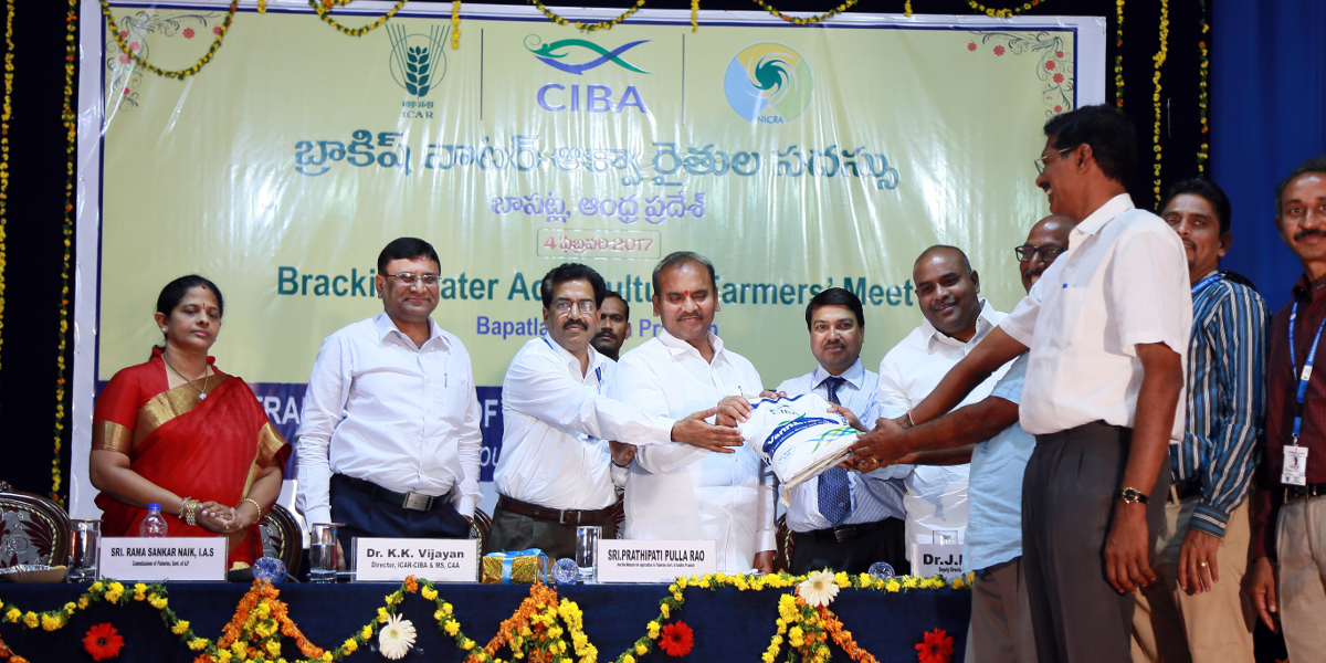 Sri Prathipati Pulla Rao, Hon. Minister for Agri., Animal Husbandry, Dairying and Fisheries, Govt. of AP Launching desi shrimp feed VannamiPlus at Bapatla, on 4th Feb 2017